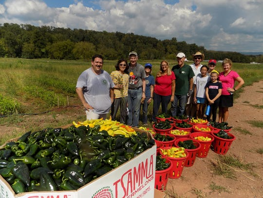 Members of the Presbyterian Church of Chatham Township volunteered at America's Grow-a-Row in September. The group harvested 6,000 pounds of apples, peppers, and pears. All produce grown at America's Grow-a-Row is donated to food banks and hunger relief agencies.