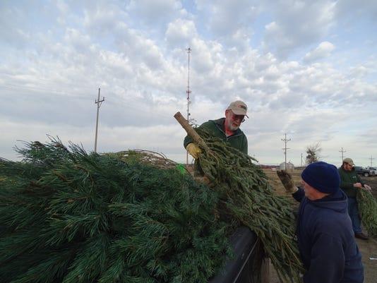 Christmas-trees-fish-habitat-Tallgrass-Trail-Foundation-Lake-01.JPG