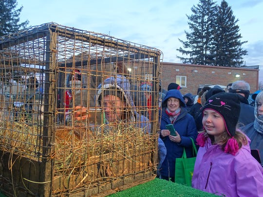 Greylyn Longstreth watches the groundhog Buckeye Chuck after the woodchuck predicted six more weeks of winter.