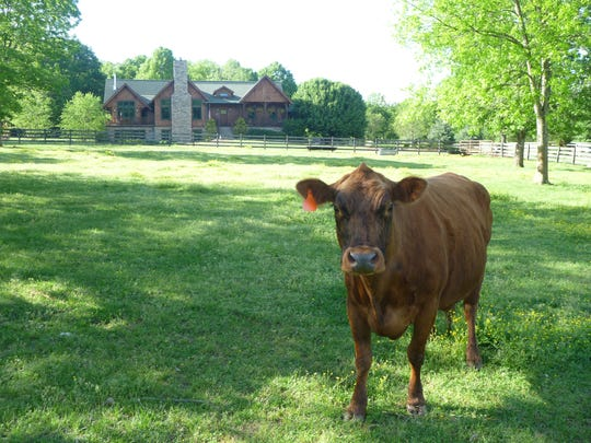 This mini farm in Nolensville is surrounded by wooded areas, open meadows and a quaint creek.
