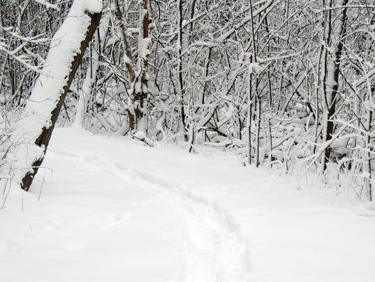 635878382617388009-SNOWSHOE-FUN-4-new.jpg