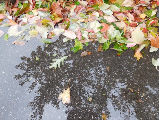 636408114248673613-rain-and-leaves.jpg