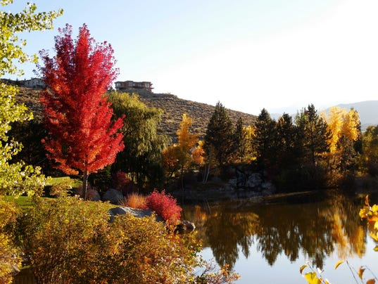 636429007910512716-2--Fall-color-by-Wendy-Hanson-Mazet.jpg