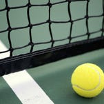 Tennis ball and net image