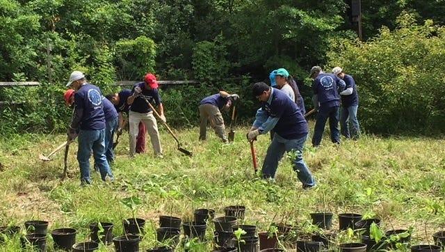 Morgan Stanley volunteers planting native tree saplings in the deer exclosure area at Fairview Farm Wildlife Preserve.
