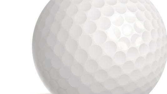 Registration for the 94th annual Tennessean/Metro Parks Golf Tournament opens Tuesday.
