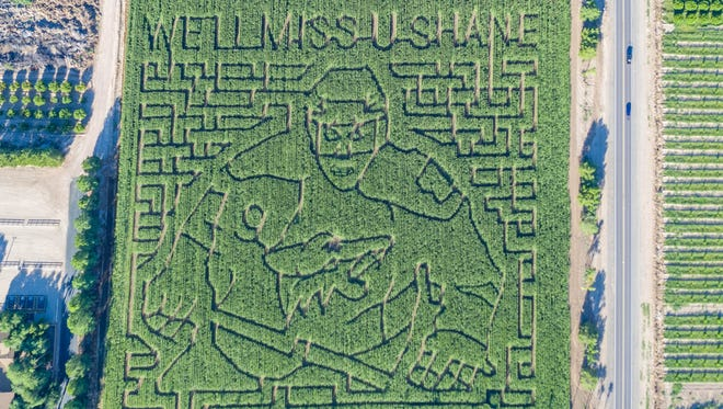 Former Arizona Coyotes captain Shane Doan was carved into Schnepf Farms' 2017 corn maze.