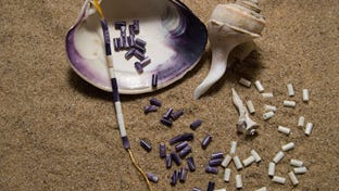 """History of Wampum and its uses"" will be the program during Saturdays at the Museum from 10 a.m. to 4 p.m. Saturday"