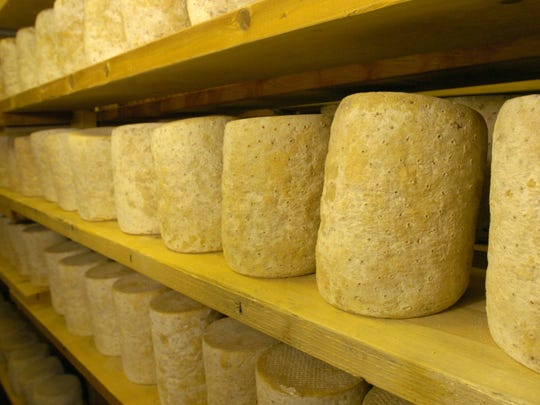 Rounds of Bayley Hazen blue cheese age in a climate-controlled cellar at Jasper Hill Farm in Greensboro in March 2005.