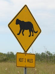 A road sign warns motorists about Florida panther habitat