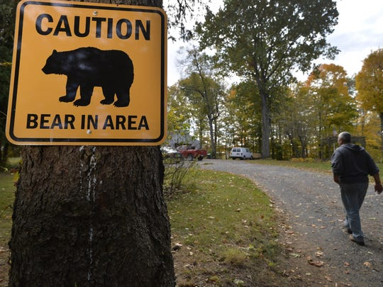 Pete Livas of Panos Farms honey farm where a wild black bear has been roaming in Michigan City, Indiana Oct. 22, 2015. (Photo for Detroit News by Paul Beaty)
