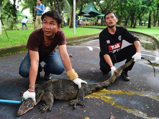 THAILAND-ANIMALS-ENIVRONMENT