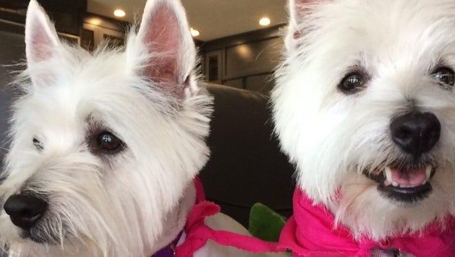 Mia and Tula