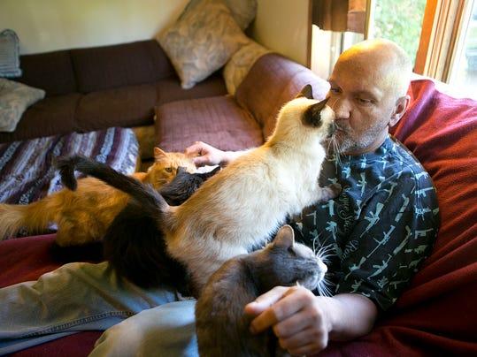 MNH Abbotsford Cats 03.JPG
