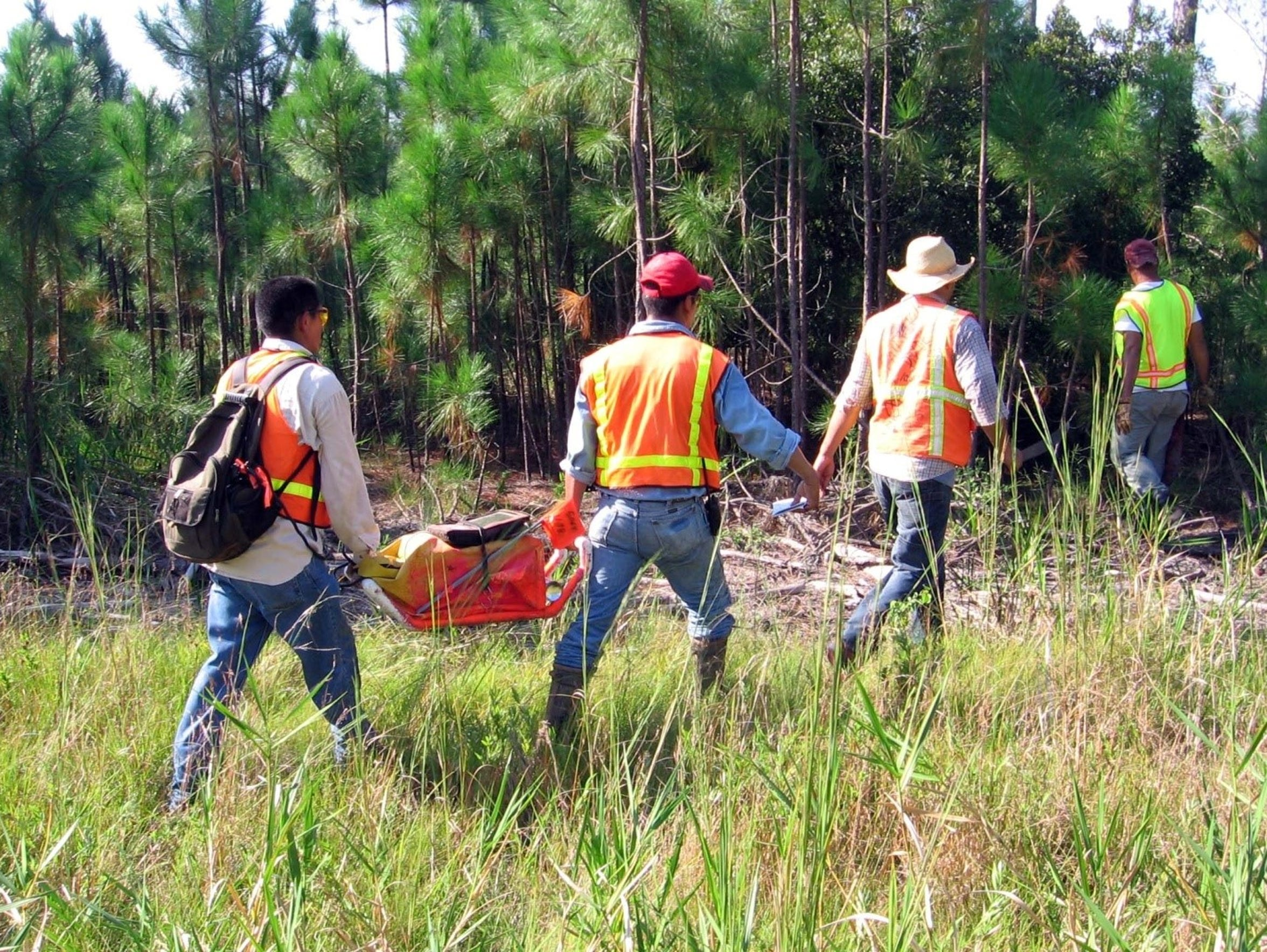 Survey crews carry equipment into a wooded area in