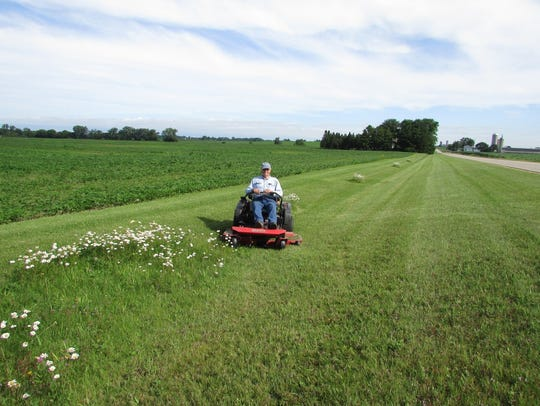Bob mowing, but not the daisies.