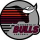 First Coast's First Pro Football Team: Jacksonville Bulls