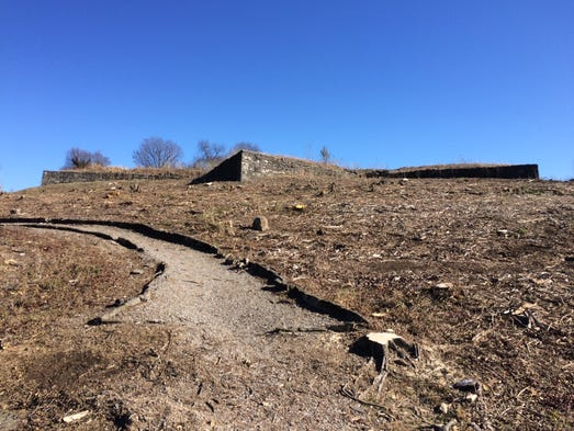 Metro Parks removed trees at Fort Negley as part of