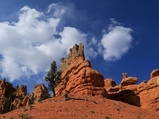 With views like this, the Photo Trail at Red Canyon in the Dixie National Forest is aptly named.