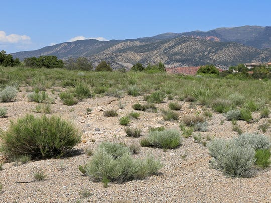 The new temple in Cedar City will likely face east from this lot toward the Markagunt Plateau.