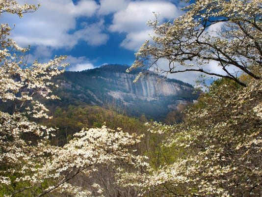 Table Rock Spring_Landscape photo contest
