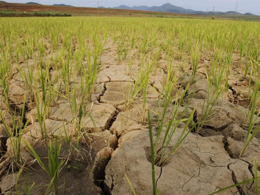 North Korea Drought_Mend