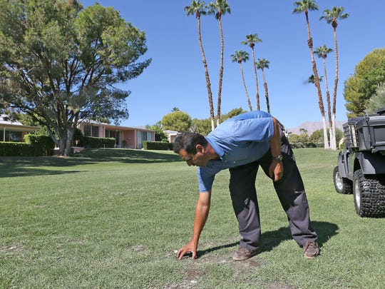 Superintendent Orlando Delgado checks the moisture on grass that is not receiving as much water at Marrakesh Country Club in Palm Desert on Aug. 4, 2015.