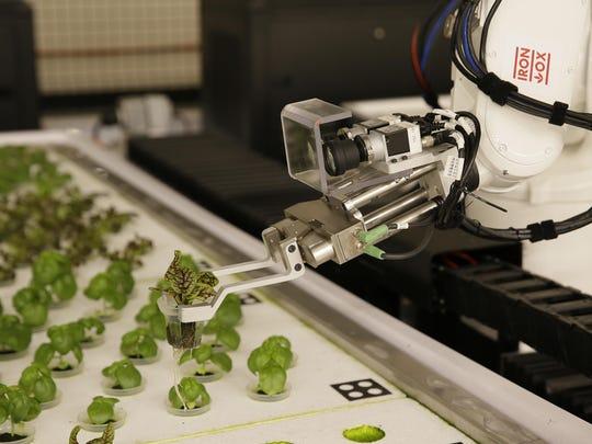 Robot Farmers (6)