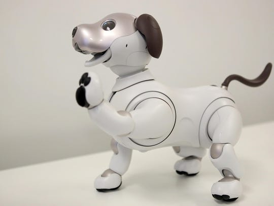 Why are states chasing away robot dogs?