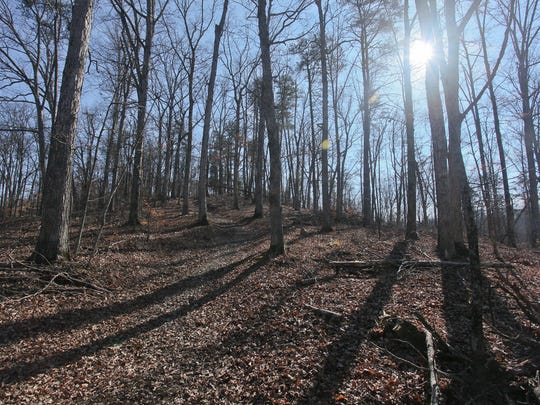 Knobs State Forest and Wildlife Management Area is in Shepherdsville, Ky.