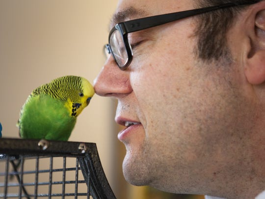 Kevin Bolton speaks to his pet parakeet, Disco, at his home in Penfield