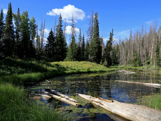 Alpine Pond lies at the center of its eponymous trail at Cedar Breaks National Monument.