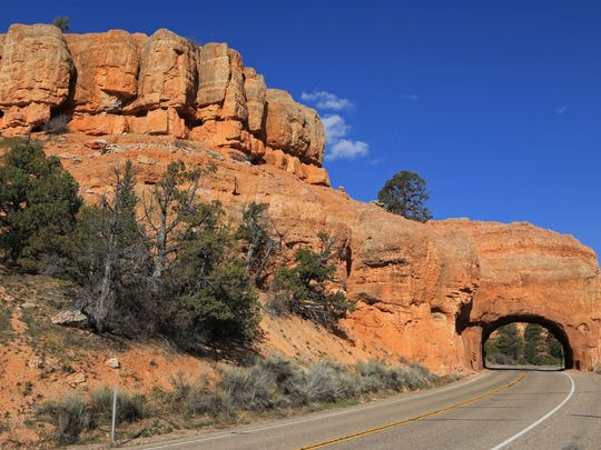 STG red canyon 0423 05.jpg