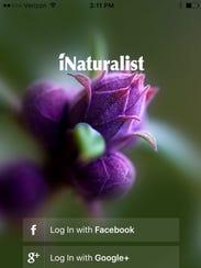 iNaturalist