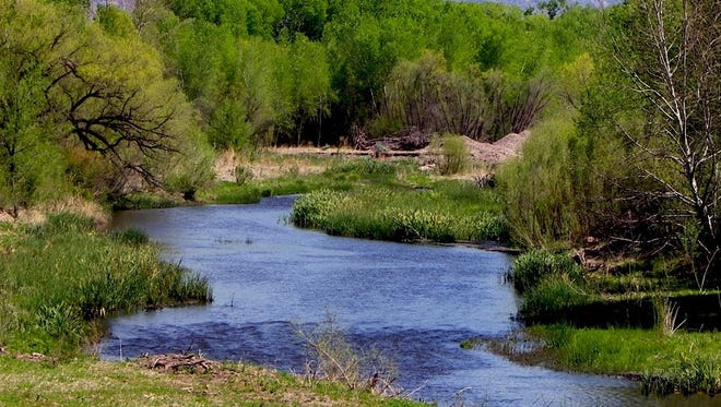 Plans for the future of the Gila River are discussed through the Central Arizona Project Entity involving representatives from Luna, Grant, Catron and Hidalgo counties.