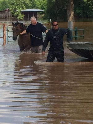 Caddo Sheriff deputies rescue a horse that was trapped by rising water on E. 70th Street.