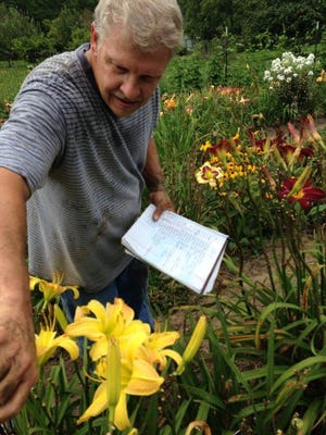 Deryl Keating looks over a daylily while consulting his field notes.