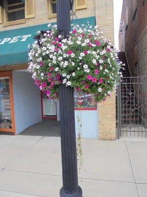 """This version of a happy city hanging basket was taken in October2016,as the """"Wilkommen, Wilkommen"""" project was coming to the end of the seasonin Bucyrus."""