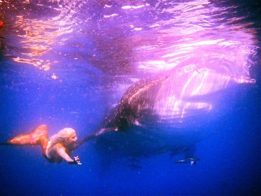 Bonnie with Whale Shark.JPG