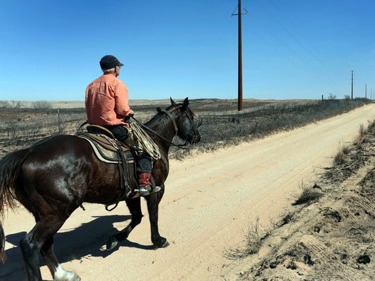 David Crockett, grandfather of Cody Crockett, who died in Monday's wildfires, rides the scorched land of Franklin Ranch searching for injured cattle Tuesday, March 7. Crockett said his grandson and friends got caught in a wild shift the blew the fire back on them, trapping them while herding cattle.