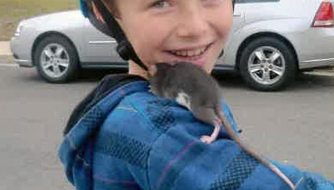 This undated photo released by Gomez Trial Attorneys courtesy the Pankey family, shows Aidan Pankey and one of his pet rats.