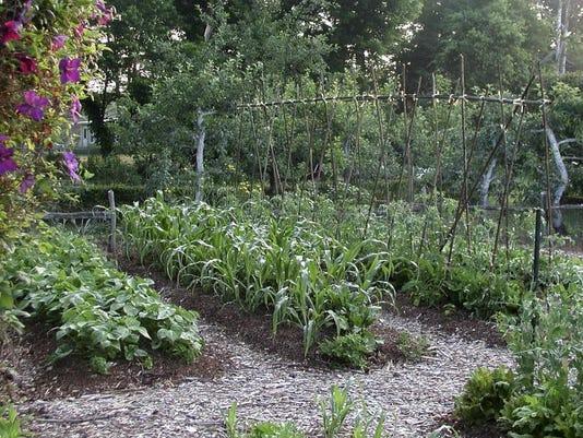 BC-US-FEA--Gardening-Easy Veggies-ref-NYLS301-3a12.jpg