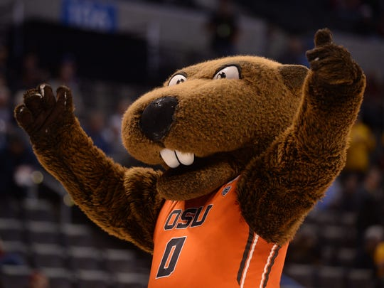 Oregon State Beavers mascot Benny Beaver before the first half against the Virginia Commonwealth Rams during the first round of the 2016 NCAA Tournament at Chesapeake Energy Arena.