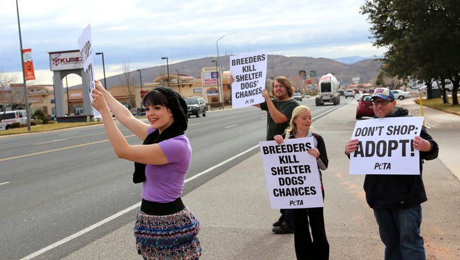 Protesters gathered in front of St. George pet store Fur de Leash on Friday, saying they suspect the store is selling puppies bred in squalid conditions at puppy mills.