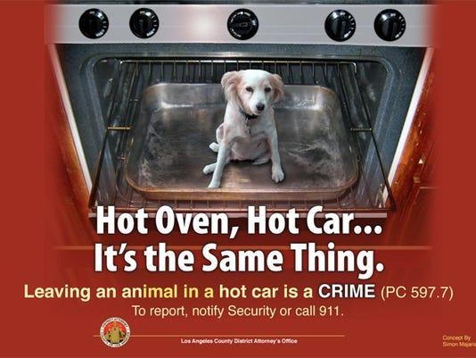 Pets-Hot Cars_Atki.jpg