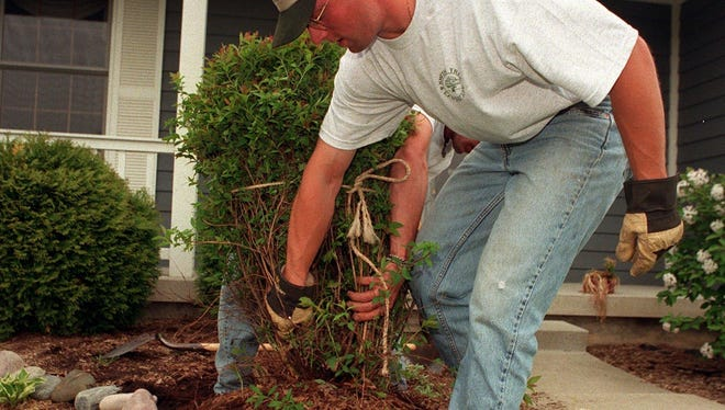 It is time to get outside and spruce up the landscaping on the lot.
