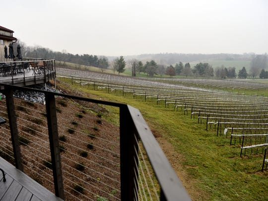 Grapevines can be seen from the deck at the Vineyard at Grandview Friday, Jan. 8, 2016, near Mount Joy.