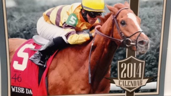 Wise Dan is the cover boy of Coady Photography's 2014 horse racing calendar.