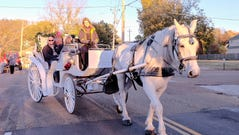 Peaches the horse is guided by carriage driver Chrissey