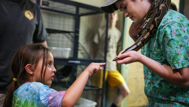 Brittleigh Hernandez, 5, reaches to touch the snake Blue Hinton is holding Thursday, June 28, 2018, at the San Angelo Nature Center.